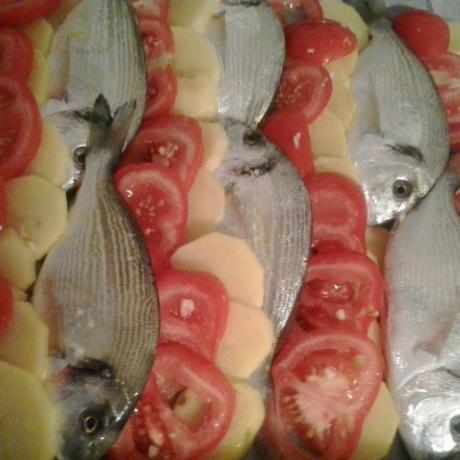 Sea breams, potatoes and tomatoes tray