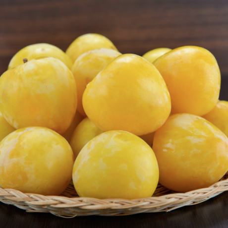Yellow plums from Lio Piccolo